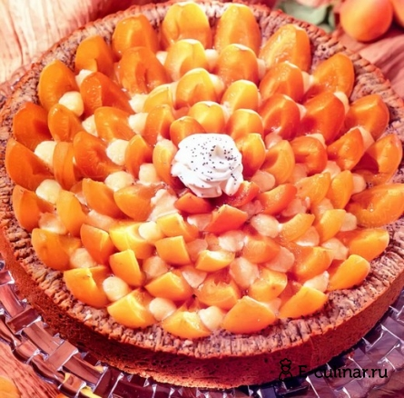Готовое блюдо Пирог с маком и абрикосами